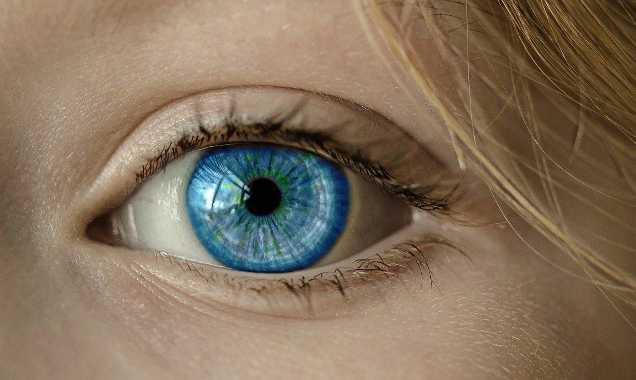 Ilusión óptica de Wundt. Las ilusiones ópticas y la psicología Gestalt